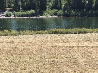 Nhn Petty Creek Road, Alberton, MT 59820 - #: 22013808