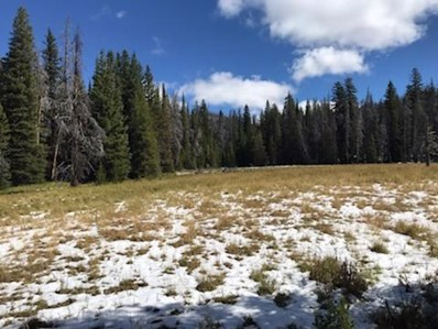 Tbd Dorothy Snow Lode, Basin, MT 59006 - #: 22015084