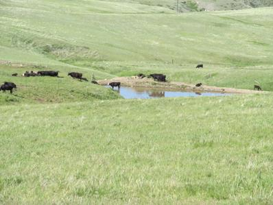 17 Cottonwood Coulee Road, Stockett, MT 59480 - #: 22108649