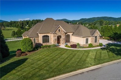 23 Bradford Vistas Road, Fletcher, NC 28732 - #: 3395614