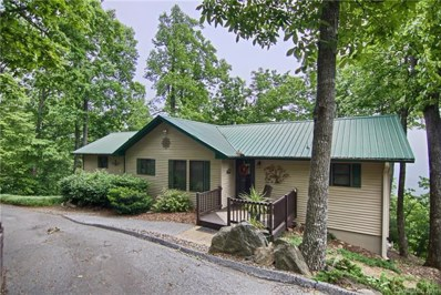 3041 Skyuka Mountain Road, Columbus, NC 28722 - #: 3396072