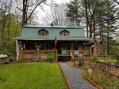 174 And 211 Critter Crossing, Lake Lure, NC 28746 - #: 3396578