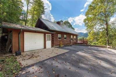 144 Fawn Trail, Canton, NC 28716 - #: 3404338