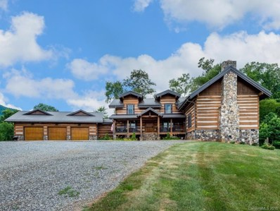 1305 Newfound Road, Leicester, NC 28748 - #: 3407514