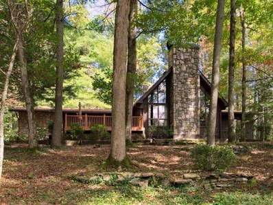 2291 Little River Road, Hendersonville, NC 28739 - #: 3443169