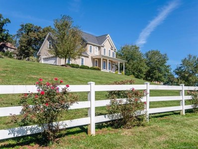 30 Turkey Creek Road, Leicester, NC 28748 - #: 3444315