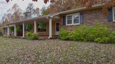 536 Old Neal Road, Marion, NC 28752 - #: 3451579