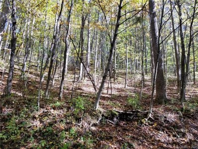 Tbd Old Chestnut Mountain Road, Newland, NC 28657 - #: 3462029