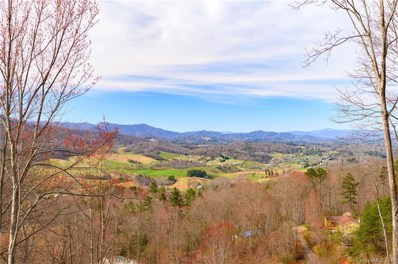 214 Hayes Cove Road, Leicester, NC 28748 - #: 3482728