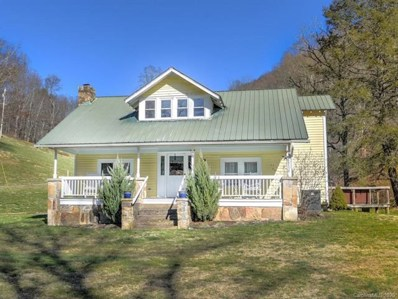 4674 Paint Fork Road, Mars Hill, NC 28754 - #: 3503057