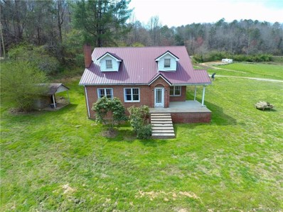 3404 Thomas Valley Road, Whittier, NC 28789 - #: 3540304