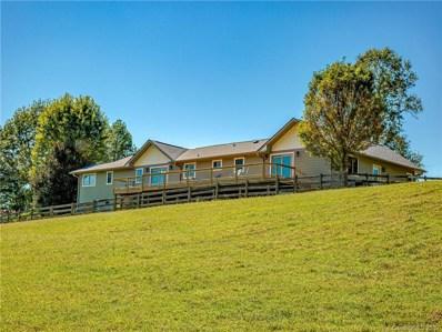292 Sun Meadow Lane, Pisgah Forest, NC 28768 - #: 3557335