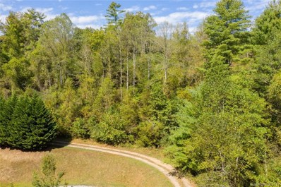 112 Crest View Drive, Marshall, NC 28753 - #: 3557722