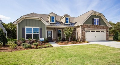 3018 Arches Bluff Circle UNIT 334, Lancaster, SC 29720 - #: 3561575