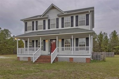 487 Discovery Road, Kershaw, SC 29067 - #: 3574533