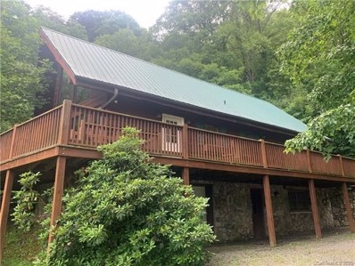 604 Price Town Road, Clyde, NC 28721 - #: 3586214
