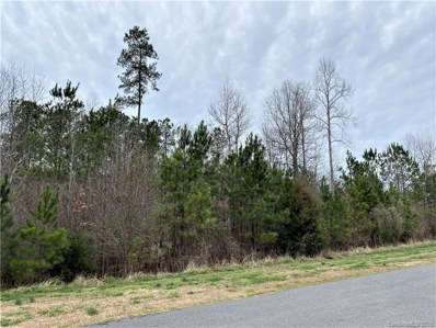 1660 Restless One Lane, Rock Hill, SC 29730 - #: 3590921