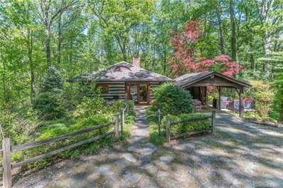 571 Wilderness Drive, Tryon, NC 28782 - #: 3613297