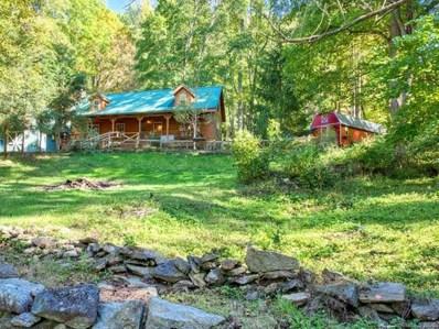 1364 Turkey Creek Road, Clyde, NC 28721 - #: 3669040