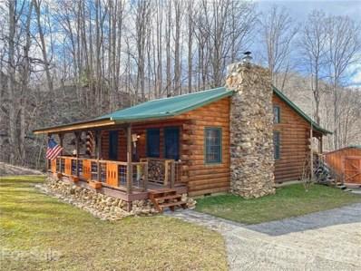 18560 NC 209 Highway, Hot Springs, NC 28743 - #: 3704955