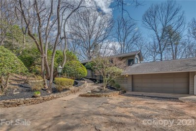172 Wilderness Road, Tryon, NC 28782 - #: 3711719