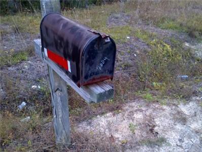 2004 Ivanhoe Road, Ivanhoe, NC 28447 - #: 637717