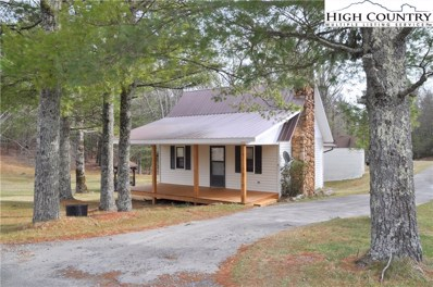18 Wood Road, Glade Valley, NC 28627 - #: 218822
