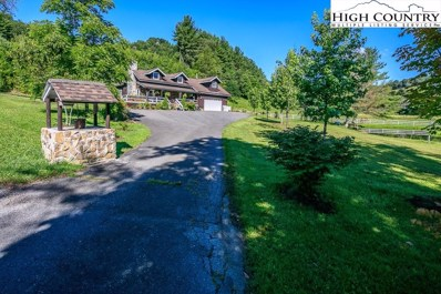 160 Crooked Creek Lane, Newland, NC 28657 - #: 221043