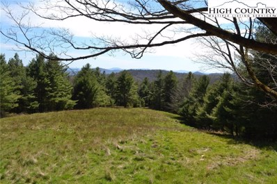 Panther Creek Road, Troutdale, VA 24378 - #: 221691