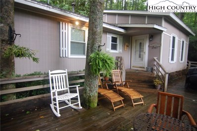 8981 Rose Hollow Avenue, Jonas Ridge, NC 28657 - #: 222821