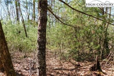 Raven Ridge, Jonas Ridge, NC 28641 - #: 229265