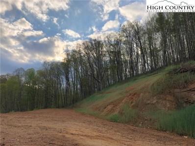 414 Old Plumtree Creek Road, Newland, NC 28657 - #: 232923