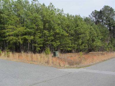 Hazelhurst Lane, Cliffside, NC 28024 - #: 40551
