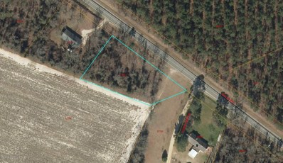 Lot #1 Hwy 55 W, Seven Springs, NC 28578 - #: 100026973
