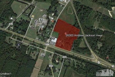 26303 Andrew Jackson Highway, Delco, NC 28436 - #: 100094022
