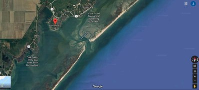 380 Nelson Neck Road, Sea Level, NC 28577 - #: 100116241