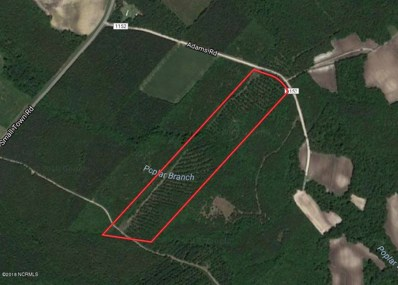 26.7 Ac State Road 1152 Road, Pink Hill, NC 28572 - #: 100116269