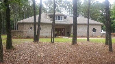 2673 Hwy 123 S, Snow Hill, NC 28580 - #: 100119175