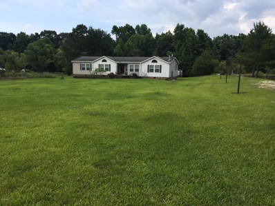 179 Gourd Hill Road, Wallace, NC 28466 - #: 100121072