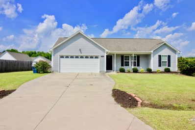 125 Christy Drive, Beulaville, NC 28518 - #: 100121655