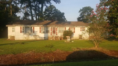 5538 Wildcat Road, Williamston, NC 27892 - #: 100125072