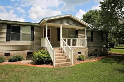 125 Louis Pugh Jones Road, Seven Springs, NC 28578 - #: 100126966