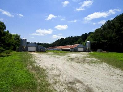 3425 Bear Grass Road, Williamston, NC 27892 - #: 100128064