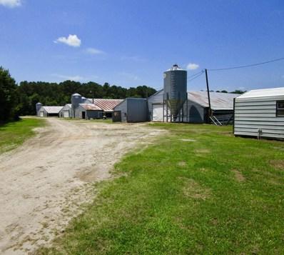 1136 Big Apple Farms Lane, Williamston, NC 27892 - #: 100128125