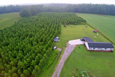 3007 Chandler Road, Vanceboro, NC 28586 - #: 100130556