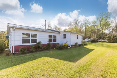 1126 Old Folkstone Road, Sneads Ferry, NC 28460 - #: 100137307
