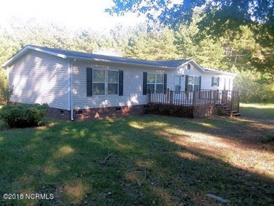 572 Lynch And Hedgepeth Road, Hollister, NC 27844 - #: 100137666