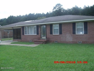 206 Old Us 13, Winton, NC 27986 - #: 100138800