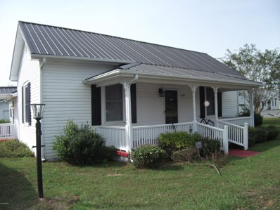 347 W 2ND Street, Garland, NC 28441 - #: 100139612