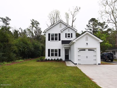 221 Peiffer Avenue, Wilmington, NC 28409 - #: 100140918